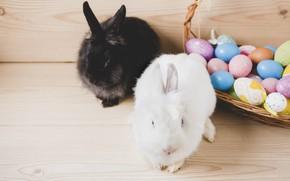 Картинка праздник, корзина, яйца, Кролики, пасха