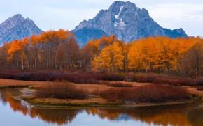 Картинка осень, деревья, горы, озеро, Вайоминг, США, Титон