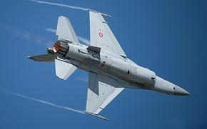 Картинка самолёт, летит, синее небо, F-16C