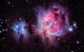 Обои туманность, красота, Orion Nebula