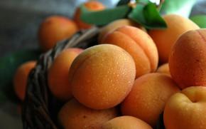Картинка Water, Summer, Peach, Drops, Fruit