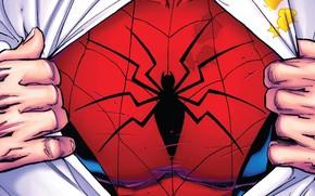Картинка Паук, Костюм, Герой, Комикс, Супергерой, Hero, Рубашка, Символ, Marvel, Spider-man, Человек-паук, Comics, Spider, Peter Parker, …