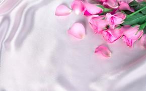 Картинка цветы, розы, лепестки, шелк, розовые, бутоны, fresh, pink, flowers, beautiful, silk, roses