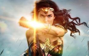 Обои cinema, film, armor, Diana, Themyscira, brunette, eagle, sword, gauntlet, movie, Wonder Woman, DC Comics, Gal ...