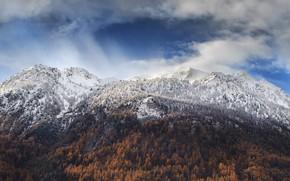 Картинка осень, лес, небо, Горы