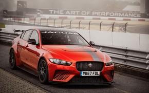 Обои асфальт, ограждение, Jaguar, оранжевый, XE SV Project 8