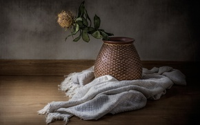 Картинка цветок, кувшин, натюрморт