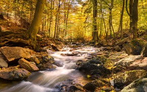 Картинка осень, лес, вода, мост, река, камни, водопад, hdr, ultra hd, 4k, река в горах, река …