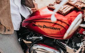 Картинка мотоцикл, перчатки, motorcycle, Tank, davidson, Бак, gloves, hyler, дэвидсон, хайлер, хайлер дэвидсон, hyler davidson