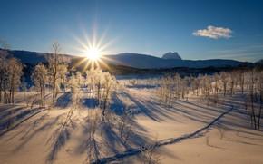 Картинка зима, лес, небо, солнце, лучи, снег, деревья, горы, рассвет