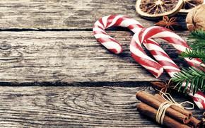 Картинка праздник, новый год, ель, леденцы, цитрус, корица