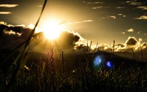 Картинка трава, солнце, облака, лучи, блики