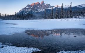 Обои зима, лес, вода, снег, природа, река, камни