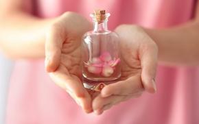 Картинка духи, лепестки, rose, pink, petals, розовые розы, parfume