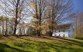 Картинка Поле, Осень, Деревья, Дом, House, Fall, Листва, Autumn, Colors, Field, Trees, Leaves