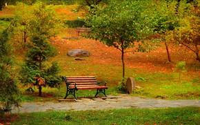 Обои Осень, Скамейка, Парк, Fall, Park, Autumn, Colors