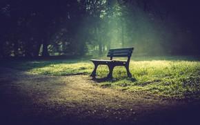 Обои скамья, парк, город