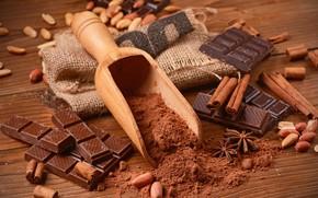 Картинка шоколад, орехи, корица, сладкое, какао