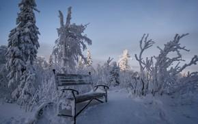 Обои Чёрная скала, скамья, национальный парк, снег, зима, Таганай