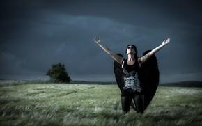 Обои поле, девушка, тучи, ангел