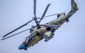 Картинка вертолёт, Россия, Ка-52, «Аллигатор», разведывательно-ударный