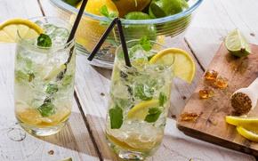 Картинка лед, стакан, лимон, коктейль, лайм, трубочка, цитрус, напиток, мохито