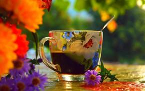 Обои Cup, Чашка, Flowers, Цветочки