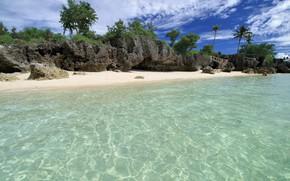 Картинка Природа, Море, Пляж, Берег, Тропики
