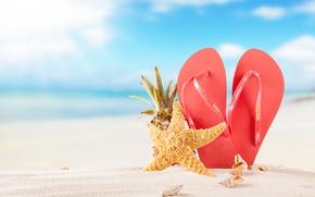 Картинка песок, море, пляж, лето, солнце, summer, beach, каникулы, sand, сланцы, vacation, starfish, seashells