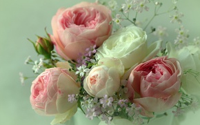 Картинка розы, букет, серый фон