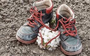 Обои heart, love, ботинки, шнурки, baby, romantic, любовь, сердце, shoes