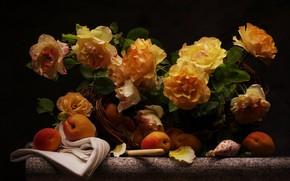 Обои букет, розы, фон, цветы