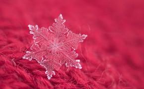 Картинка макро, ворс, снежинка