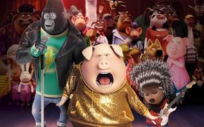 Обои gorilla, elephant, animated film, porcupine, animal, dance, music, Sing, bull, rabbit, animated movie, lhama, pig, ...