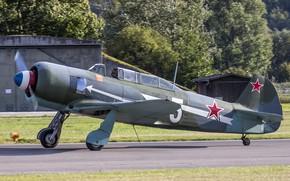 Картинка самолёт, учебно-тренировочный, Як-11, Yak-11