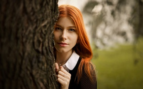 Картинка девушка, парк, дерево, макияж, прическа, рыженькая, боке, выглядывает, Anastasia Zhilina