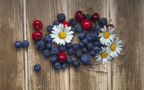 Картинка ромашки, черника, wood, blueberries, cherries, chamomiles