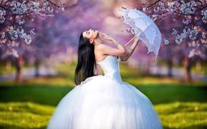 Картинка девушка, деревья, ветки, поза, зонтик, настроение, весна, сад, невеста, цветение, свадебное платье