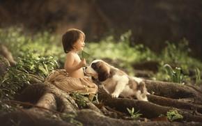 Картинка радость, малыш, щенок