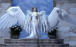 Картинка взгляд, цветы, ангел
