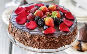 Картинка ягоды, шоколад, лепестки, торт