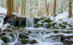 Картинка Природа, Зима, Водопад, Деревья, Река, Снег, Лес