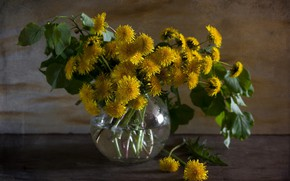 Картинка цветы, букет, весна, ваза, одуванчики