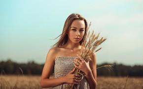 Картинка поле, небо, взгляд, девушка, солнце, портрет, макияж, платье, прическа, колосья, шатенка, красивая, боке