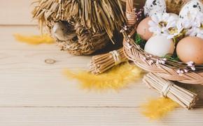 Картинка птица, корзина, яйца, пасха, домик, Праздник