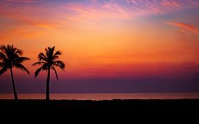 Картинка пальмы, paradise, берег, palms, beach, песок, море, sunset, волны, summer, tropical, лето, пляж, sea, sand, …