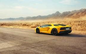 Картинка Lamborghini, Dubai, Yellow, Supercar, Rear, Aventador S