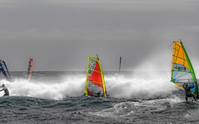 Картинка море, волны, ветер, парус, доска, регата, виндсёрфинг