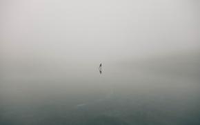 Обои туман, человек, лёд