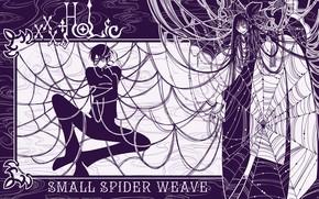 Картинка девушка, паутина, паук, аниме, парень, xxxHolic, Триплексоголик